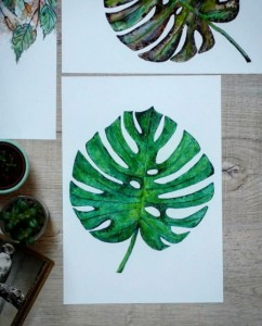 Monstera - plakat A4